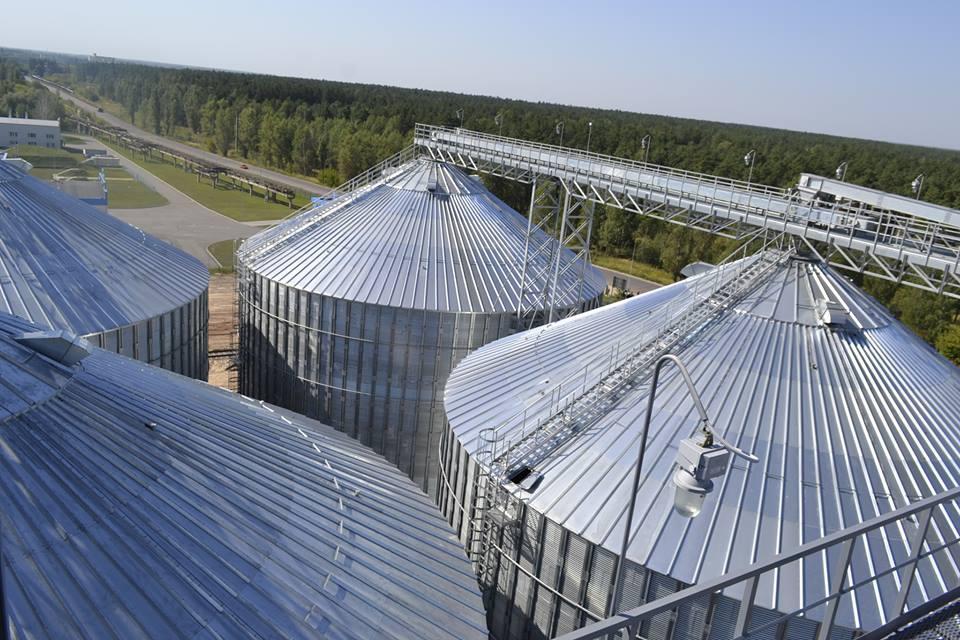 Шосткинский элеватор перерабатывает порядка 4 тыс. тонн зерна в сутки